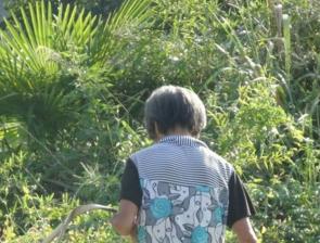 典型病例【2】:刘某,女,62岁